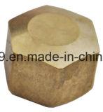 Ajustage de précision en laiton américain de chapeau d'élém. de Fmale