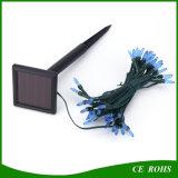 Indicatore luminoso solare variopinto della stringa LED della decorazione del partito di giardino