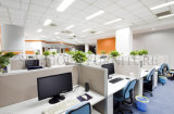 オフィスのキュービクルの販売2の側面の低いパネルのオフィスの区分(SZ-WST737)