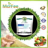 Fertilizante NPK solúvel em água (20-20-20)