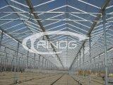 Estufa de vidro para o sistema hidropónico vegetal