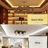 110Vは装飾のための白いLEDロープライトを暖める
