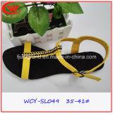 Sandals Shoes女性の余暇のスリッパのシンプルな設計の女性