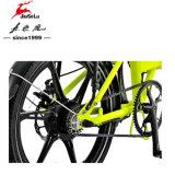 전기 자전거를 접히는 250W 후방 무브러시 모터 알루미늄 합금