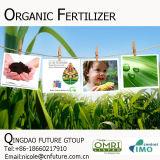 Preço de fertilizante orgânico de Humate do potássio