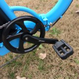 E-Велосипед снежка мотора 20inch Bafang
