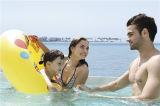 Monalisa 7.8m het OpenluchtZwembad van de Draaikolk van de Oefening