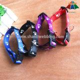 Hot-Sale de alta qualidade Dog-Feet Impresso 20mm poliéster / nylon trela e colar ajustável