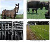 Фикчированная загородка поля фермы узла для звероловства