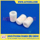 Vite di ceramica personalizzata della larva di Zirconia