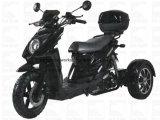 Movimiento elec Trike del disco EPA del Cdi de la motocicleta de Zhenhua Pst50-2 50cc