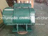 Gran motor eléctrico de la CC de la pequeña calidad 0.4-200kw para la venta