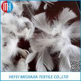 Clavettes grises/blanches d'oie lavées les meilleur marché et de canard pour la matière d'agrégation