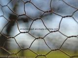 Rete metallica esagonale di vendita calda per la gabbia del coniglio del pollo