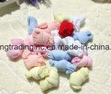 Máquina de confeção de malhas de seda da peúga