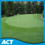 Césped sintético para Mini golf Putting Green G13