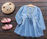 Kinderen die de Kleding van het Denim van de Manier van de Rokken van de Meisjes van Jonge geitjes kleden