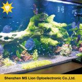 2016 nueva luz completa del acuario del CREE LED del espectro de WiFi Dimmable 165W para el coral