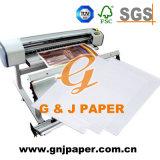 Documento di trasferimento di buona qualità in piccolo rullo per il trasferimento di plastica