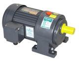 Motore dell'attrezzo di CA del diametro 18mm dell'asta cilindrica piccolo (verticale)
