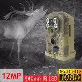 Câmera infravermelha escondida da fuga da caça da imagem latente video da gravação do tempo longo