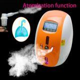 2L de Generator van de Concentrator van de zuurstof met verstuiver-Stella