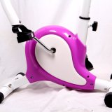 Bici di esercitazione magnetica della strumentazione della costruzione di corpo/addestratore domestico di forma fisica