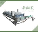 Linha de produção enlatada da fruta e verdura com preço de fábrica para a exportação