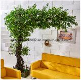 方法人工的なバンヤンの庭の装飾のフィカスの木