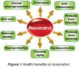 Het Uittreksel 50%-99%Resveratrol van Cuspidatum van Polygonum voor Natuurlijk Supplement