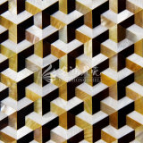 Gelbes Lippenmopp-Shell und Frischwassershell-und Feder-Shell-Paralleltrapez-Mosaik-Fliese
