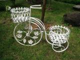 Support élégant de planteur de bicyclette de 2 rangées