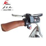 Mehrfarbendame City E-Fahrrad (JSL036E-4) der Aluminiumlegierung-700c des Entwurfs-250W