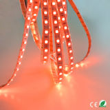 가정 훈장을%s 50m SMD5050 ETL LED 표시등 막대