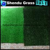 Luz - verde e obscuridade - grama artificial da cor verde