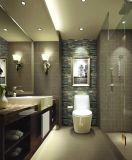 Steinstreifen-Mosaik für Wand-Dekoration