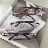 Vidros de leitura da senhora Metal da alta qualidade do projeto