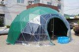 최신 판매 옥외를 위한 큰 당 지오데식 돔 천막