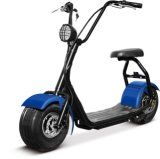 Grand scooter électrique avec la moto du moteur 1000W