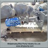 금속은 화학제품 폐기물 수직 슬러리 펌프를 일렬로 세웠다