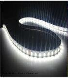 5m luminosi eccellenti illuminazione di striscia non impermeabile flessibile bianca di 5050 300LEDs LED