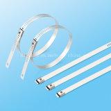 Edelstahl-Strichleiter-Widerhaken-Verschluss-Kabelbinder in der Telekommunikation
