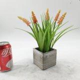 Plantas Potted do Bellflower artificial da decoração
