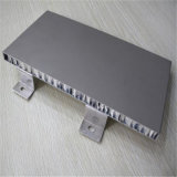 El panel de pared de aluminio del panal de la suspensión con la prueba del agua y de fuego (HR501)