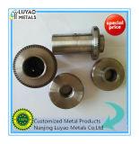 概要の企業のために機械で造るOEMのステンレス鋼/鋼鉄CNC