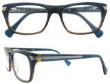 Blocco per grafici all'ingrosso degli occhiali di Eyewear di disegno dell'Italia dei telai dell'ottica