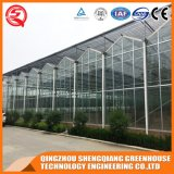 Estufa comercial do vidro Tempered de jardim vegetal de China