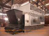 De biomassa In brand gestoken Fabrikant van de Stoomketel