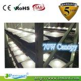 CREE COB Meanwell Driver Lámpara de techo 45W LED Canopy Light