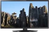 23.6 pouces DEL TV (24L41)